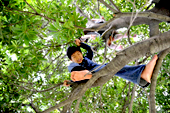 自分らしいスタイルで横浜・都筑の生活を楽しむ素敵な女性~ツヅキネーゼ【vol.12 藤吉光恵さん紹介のツヅキネーゼの御用達~くさぶえの道 元気に木登り】