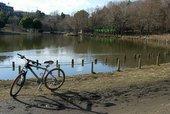 下村さんのマウンテンバイク