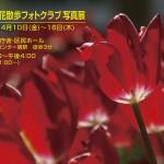 第14回花散歩フォトクラブ写真展 - コピー