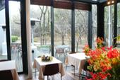 パークサイドカフェ~緑道が見渡せる窓際のテーブル席